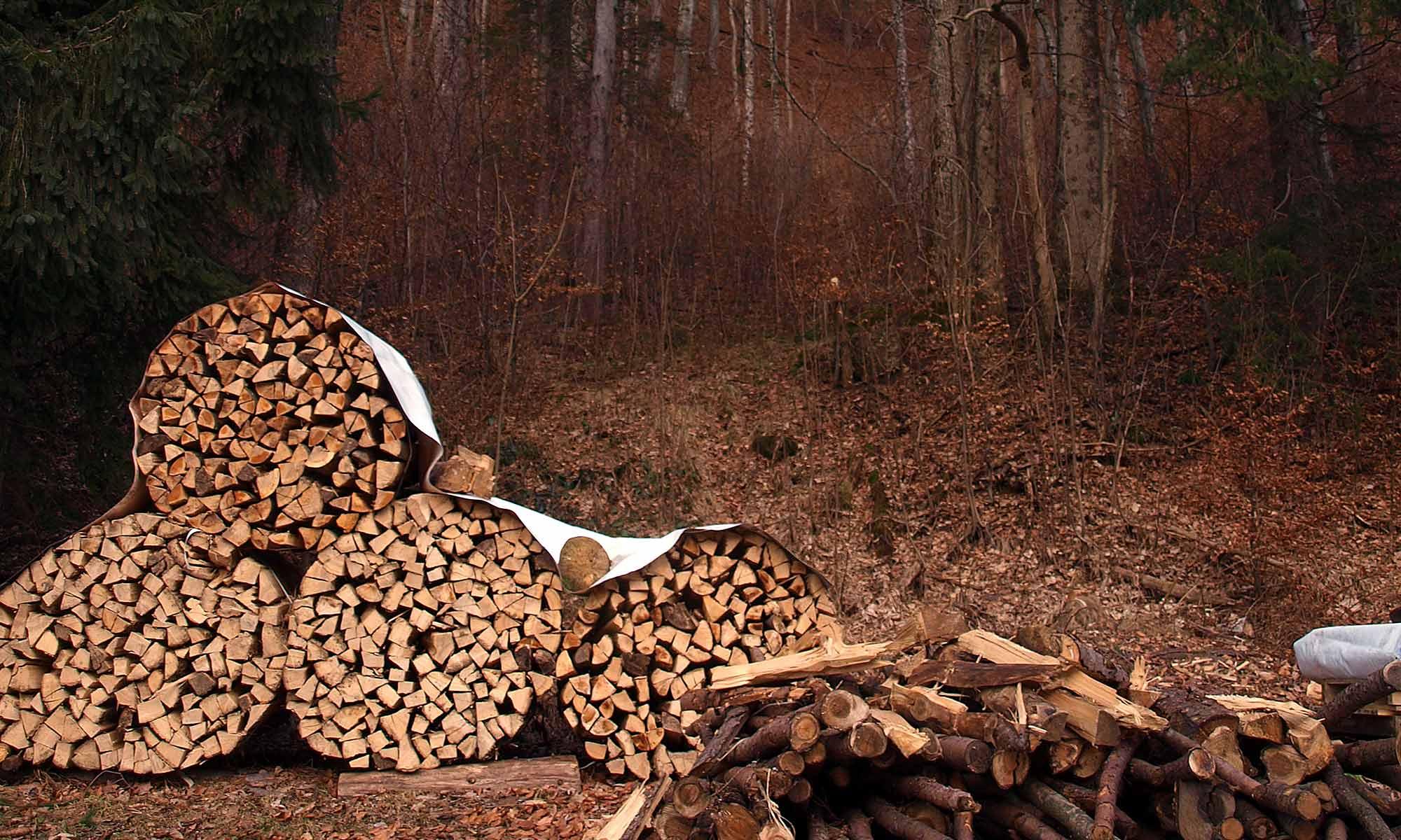 Holzvermarktung und Forstbetrieb