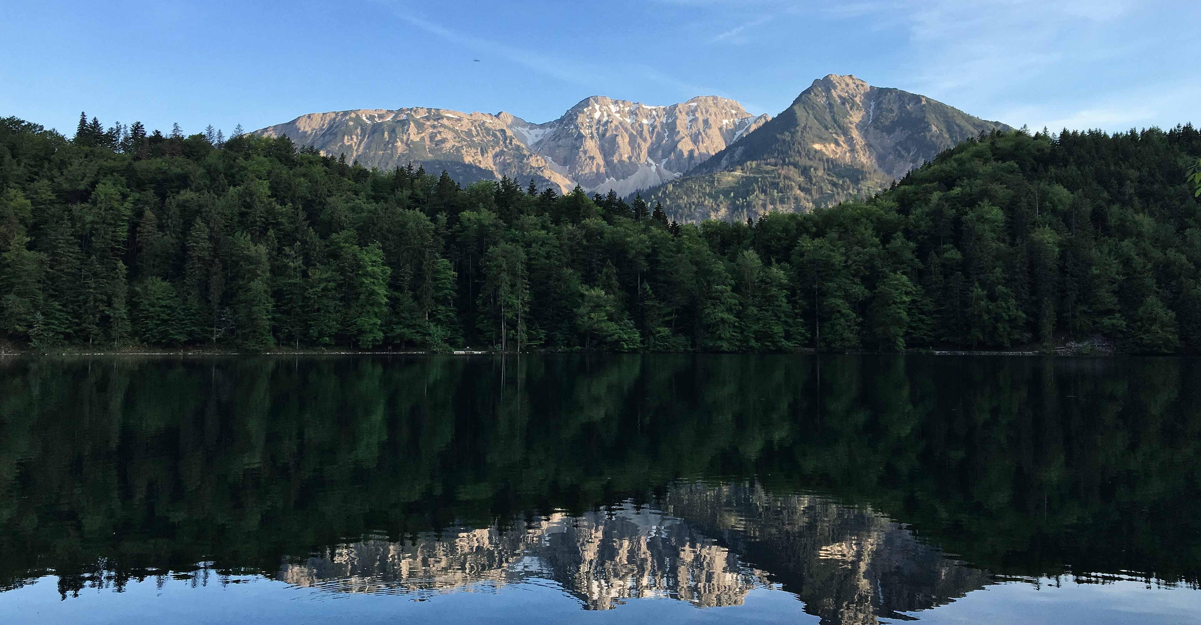 See mit Wald im Oberallgäu