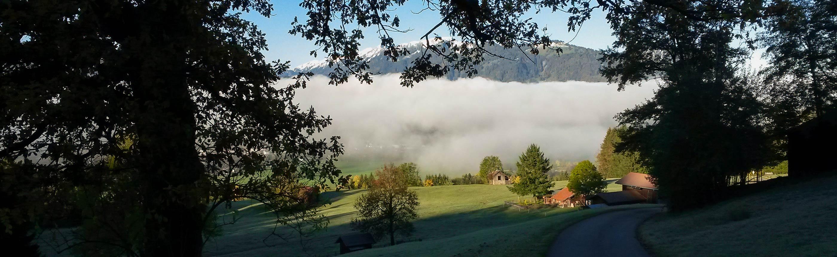 Nebel, Berge und Wald im Allgäu