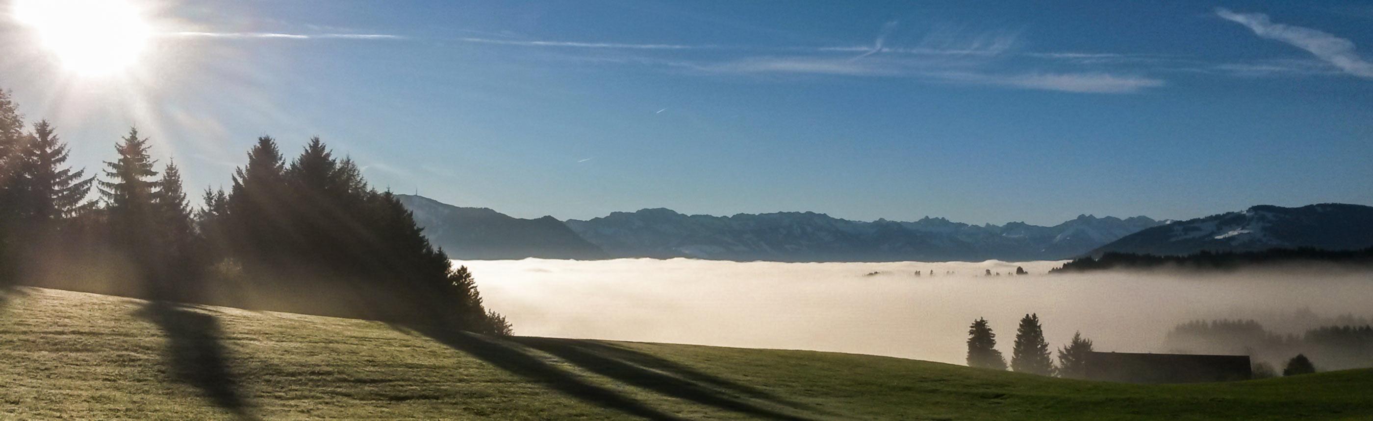 Nebelwald in Oberstdorf