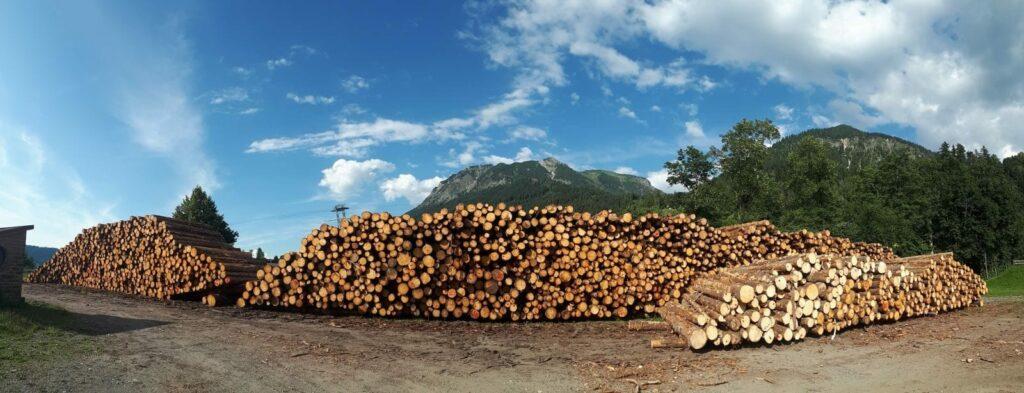 Holzlager FBG